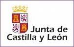 jcyl.es